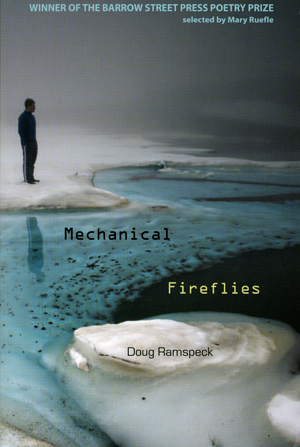 Cover of Mechanical Fireflies by Doug Ramspeck